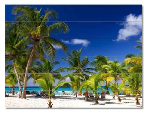 Foto op hout voorbeeld palmbomen